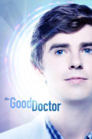 The Good Doctor (O Bom Doutor) – Todas as Temporadas