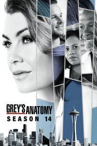 Grey's Anatomy: 14 Temporada