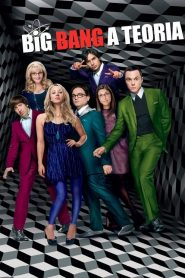 Big Bang: A Teoria: 6 Temporada