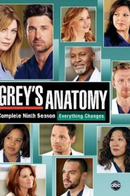Grey's Anatomy: 9 Temporada