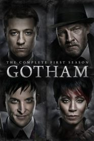 Gotham: 1 Temporada