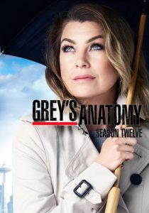 Grey's Anatomy: 12 Temporada