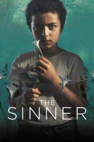The Sinner: 2 Temporada