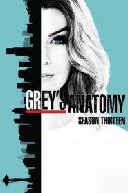 Grey's Anatomy: 13 Temporada