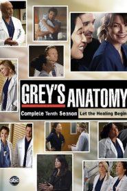 Grey's Anatomy: 10 Temporada