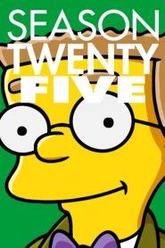 Os Simpsons: 25 Temporada
